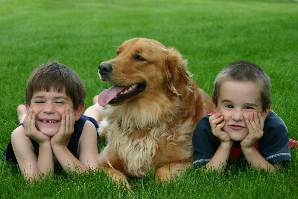 boys with dog